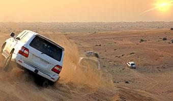 Desert Safari (Private)