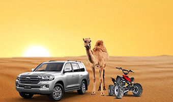 Desert Safari (Most Popular)